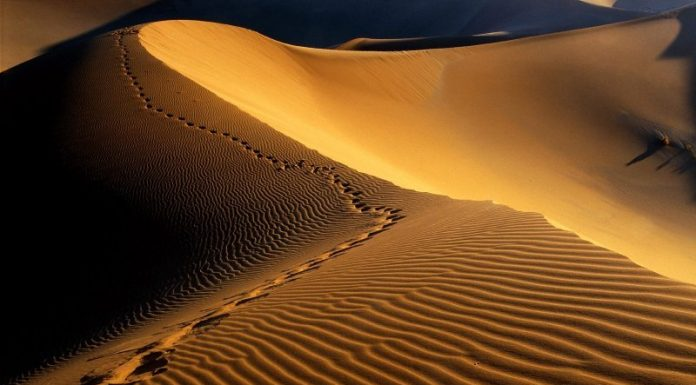 Cerita Nabi Muhammad, Kisah Sedih Rasul SAW Di Thaif
