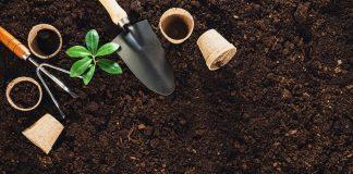 Family Farming Itu Bisa Jadi Pemenuhan Kebutuhan Pangan Secara Mandiri