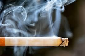 Hari Tanpa Tembakau Sedunia 3