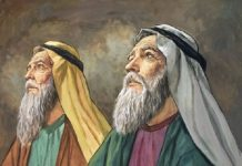 Keajaiban Allah Dalam Kisah Nabi Zakaria