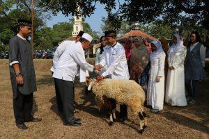 Pemkab Brebes Pantau Penjualan Hewan Qurban dan Syaratnya Menurut Syariat Islam