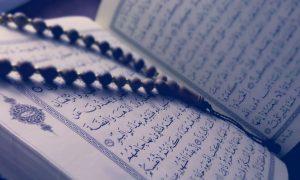 Relawan Sembari Gelar Aksi Unjuk Rasa dan Begini Bentuk Perdamaian Islam