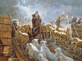 baca lengkap kisah nabi nuh dalam seri cerita nabi dan cerita islami untuk menambah keimanan dan ketaqwaan kita kepada Allah