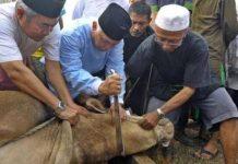 doa menyembelih hewan kurban