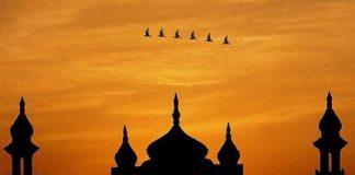 fenomena agama islam